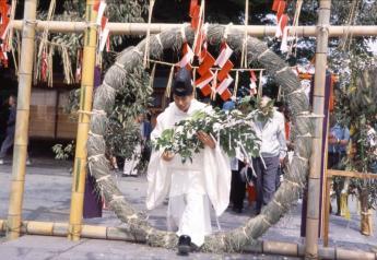 고라타이샤 가와타리사이(헤코카키 축제)