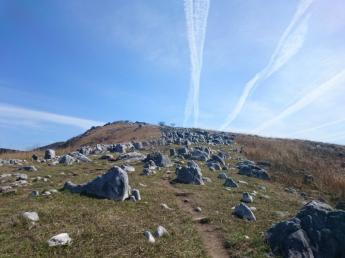 일본 삼대 카르스트의 하나인 히라오다이를 걷는 누키 산.…