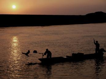 하라즈루 여름의 풍경 전통어법 우카이(아마우지 어법)…